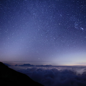 Zodiacal light  by Noriko Tabuchi (white-roots)) on 500px.com