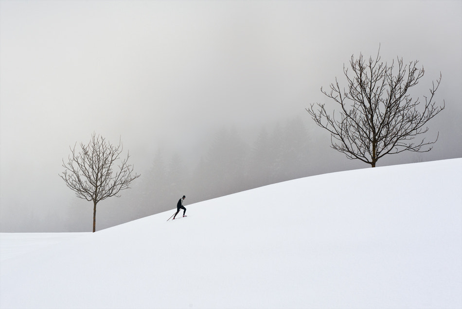 Photograph the-struggle-of-the-cross-country-skier by Marei ... on 500px