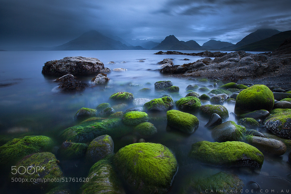 Photograph Moody Moss by Cain Pascoe on 500px