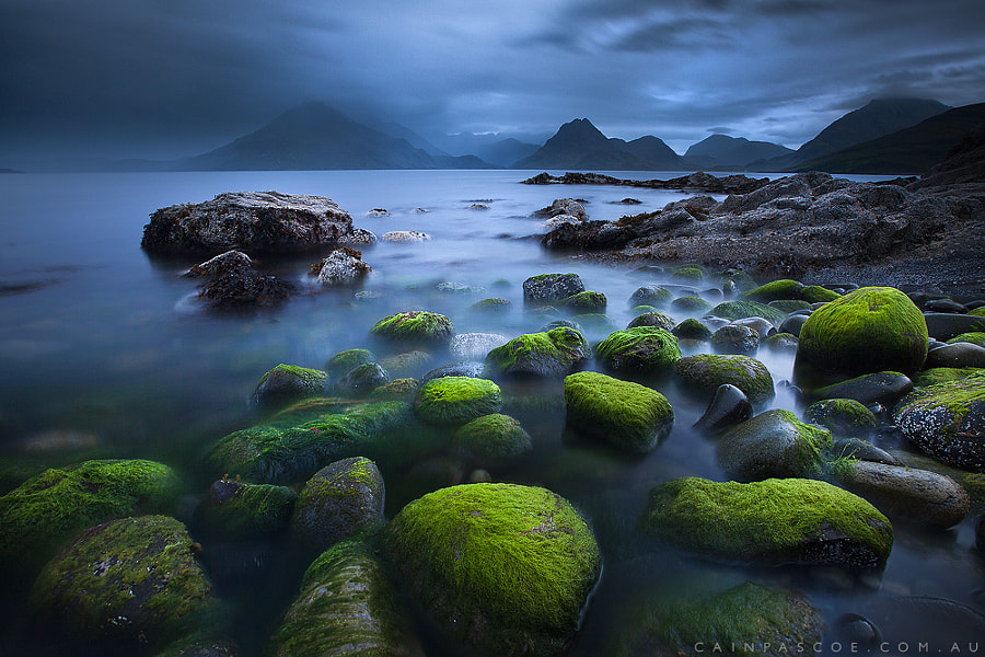 Moody Moss by Cain Pascoe on 500px.com