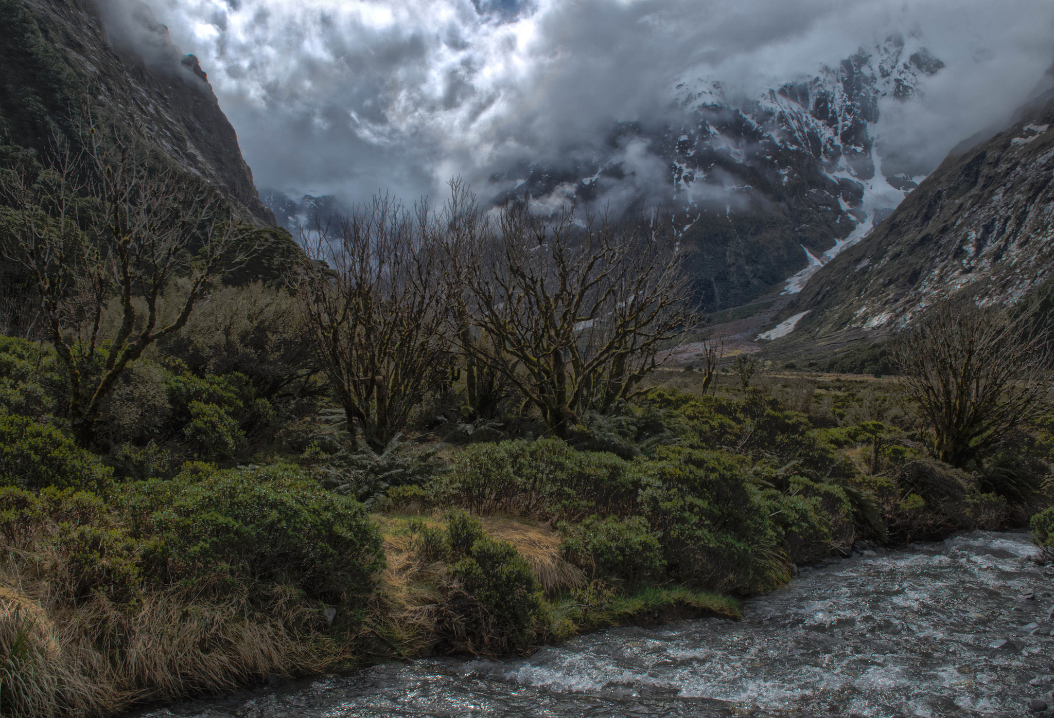 Photograph Glacial River, Fiordland, New Zealand by victorw2 on 500px
