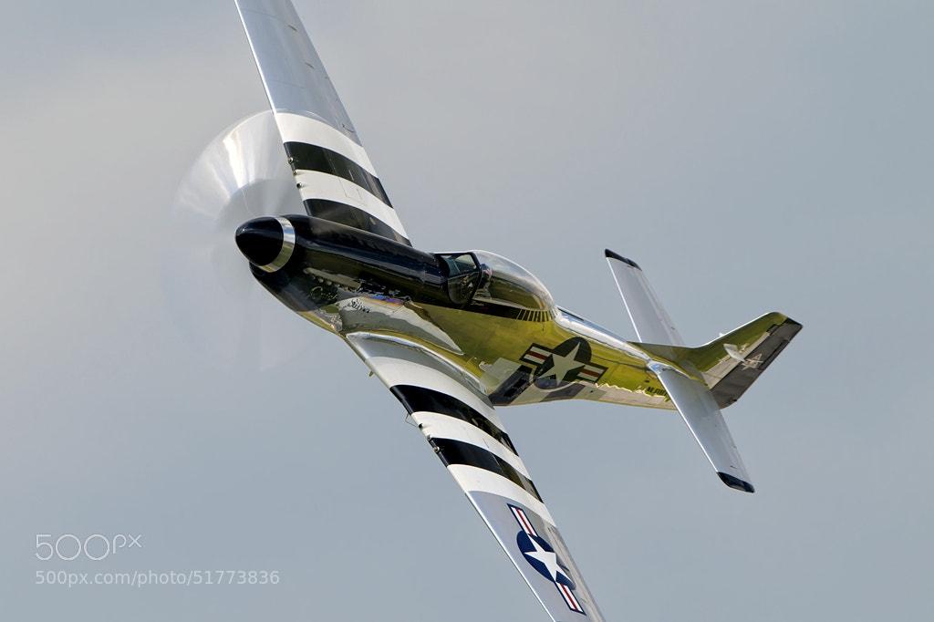 Photograph Mustang by Darek Siusta on 500px
