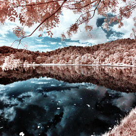 Infrared Reflections by Lomoholicz Photography (Lomoholicz)) on 500px.com
