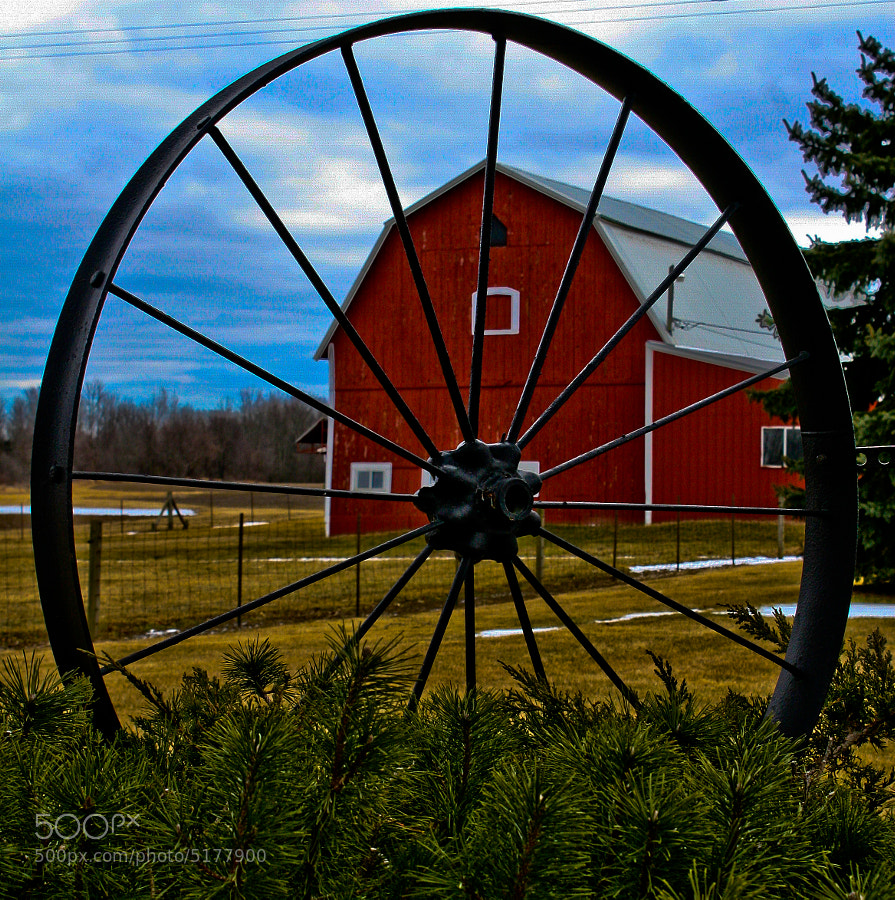 Another farm near Romeo, Michigan