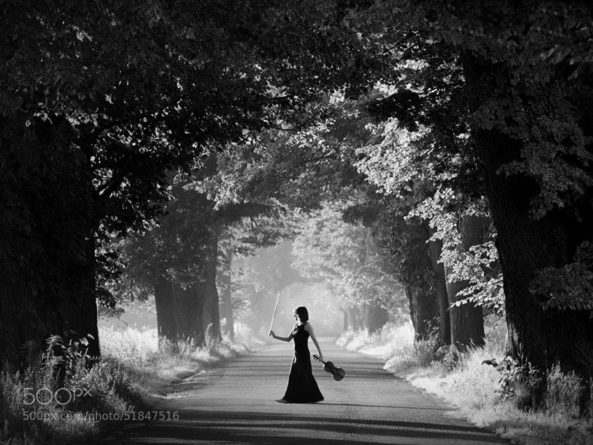 Photograph second violin by Sebastian Luczywo on 500px