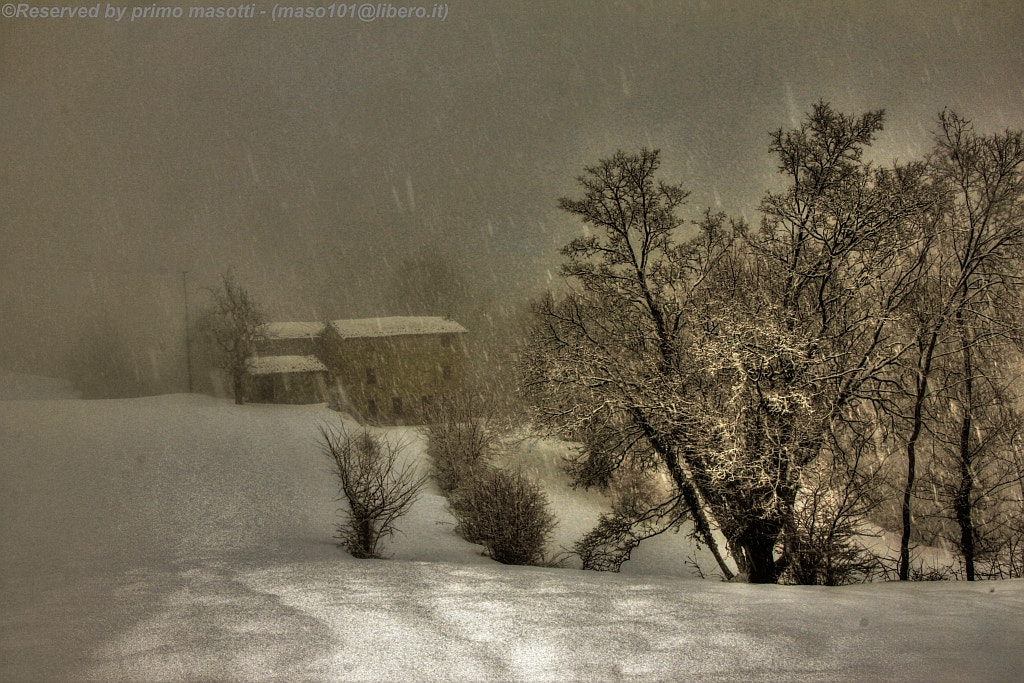 Photograph The house of my Uncle - (missano zocca modena italy)_0239_DVD 14 by primo masotti on 500px