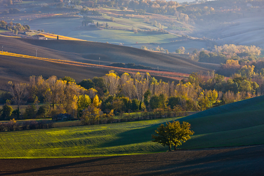 Photograph Tuscan Delight by Hans Kruse on 500px