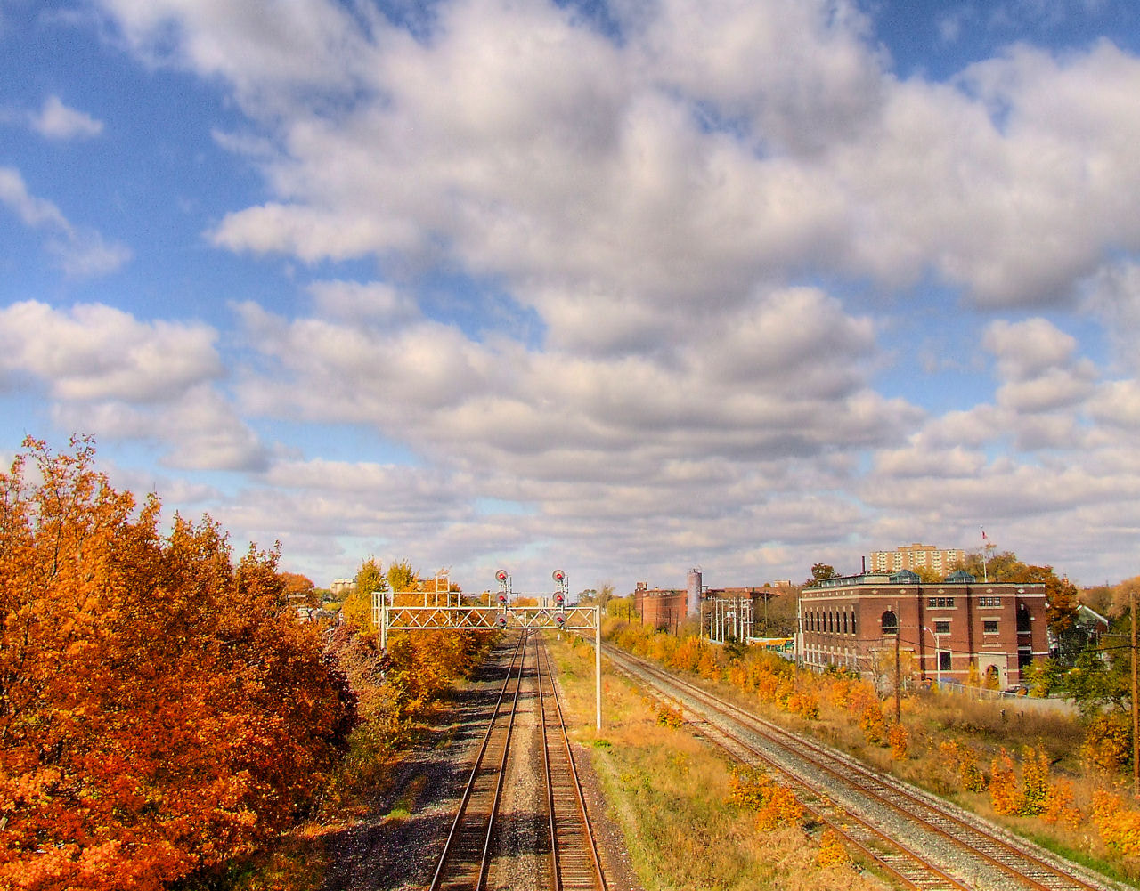 Photograph Autumn Tracks by Grant MacDonald on 500px