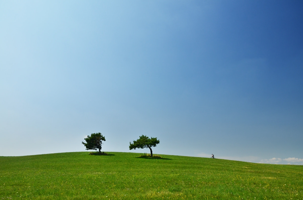 Photograph Two Trees and Two Wheels by Peter Kováč on 500px