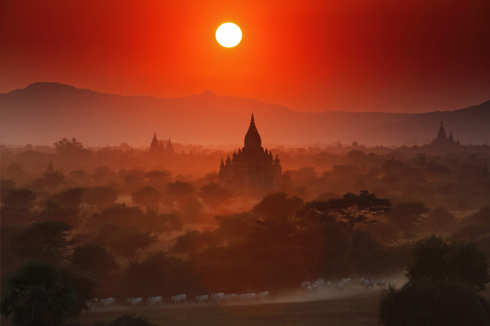 Photograph Bagan memories by Shifaan Thowfeequ on 500px