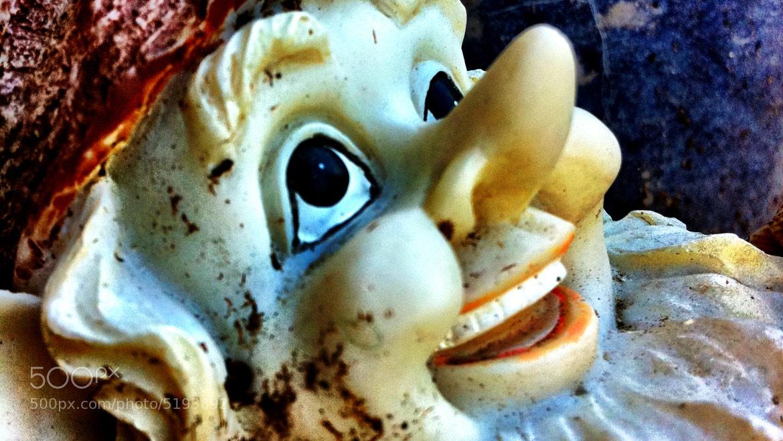 Photograph Gordon Gnome by Katharine Holmes on 500px