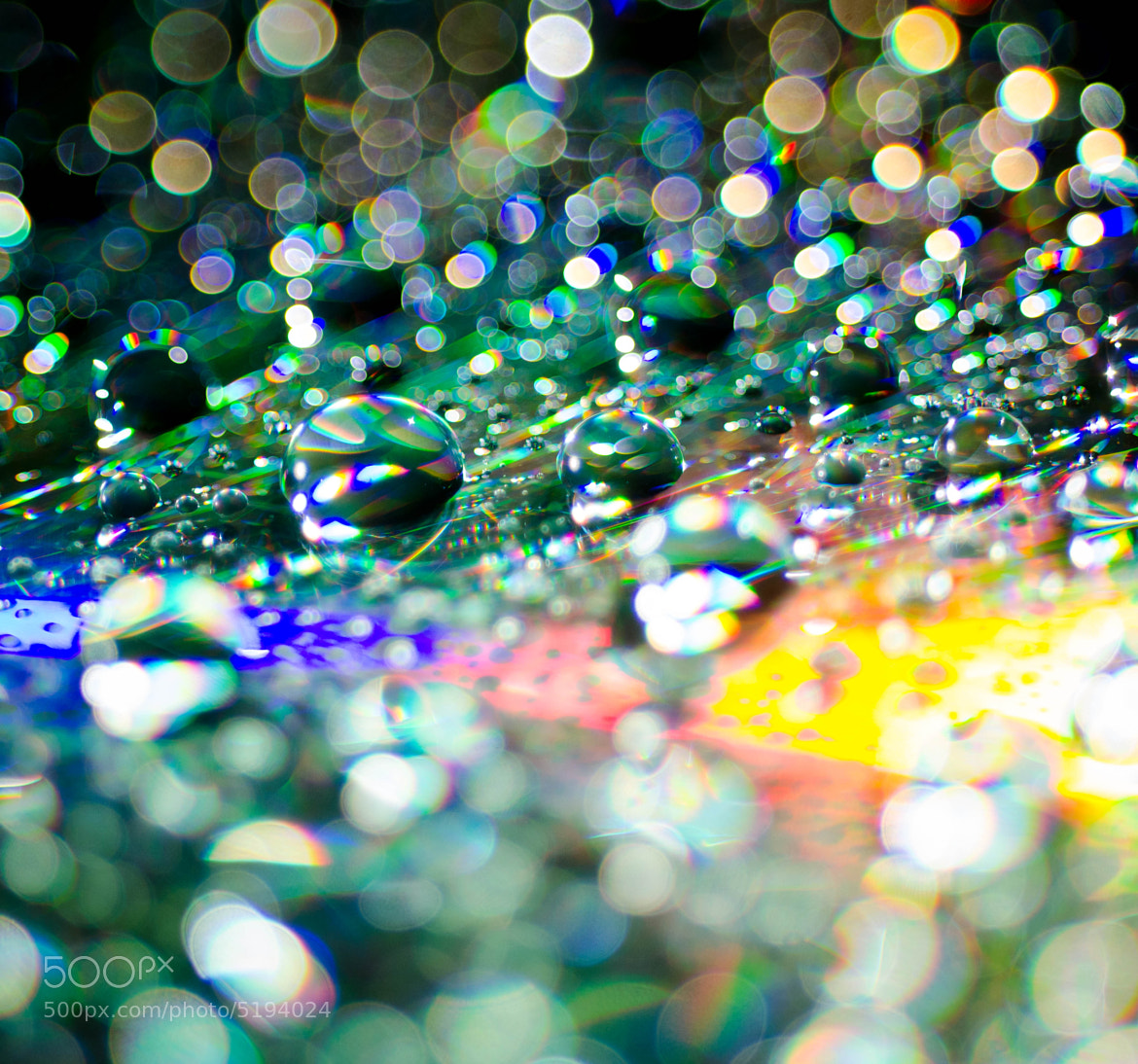 Photograph Fairy Dust by LaDonna Pride on 500px