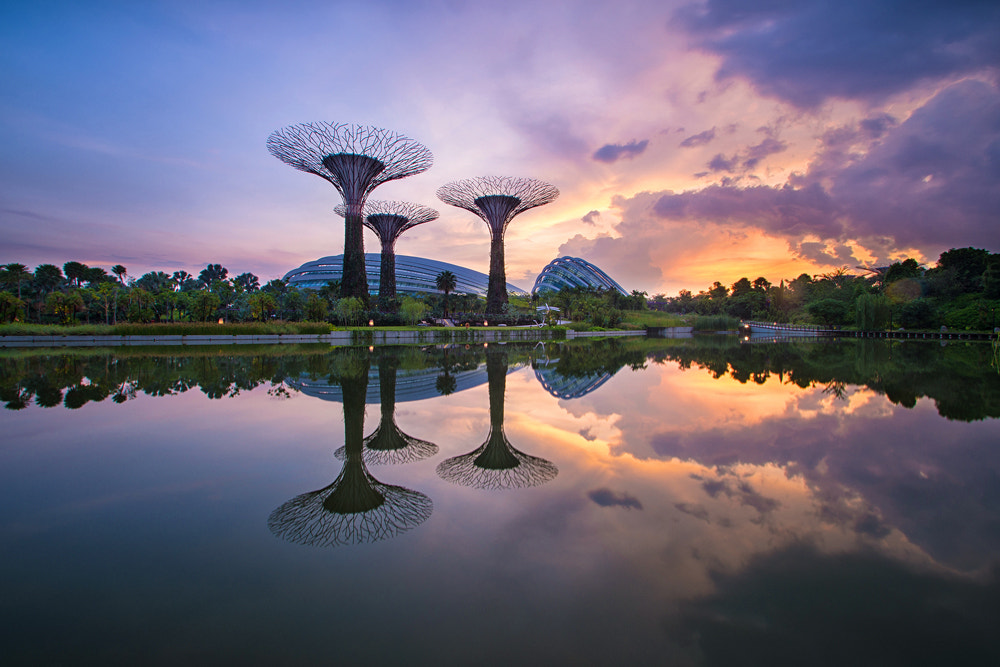 Photograph Trumpet Heads by WK Cheoh on 500px