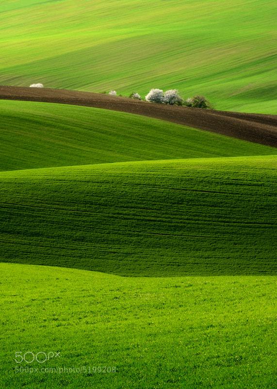 Spring... by Pawel Kucharski (pablook)) on 500px.com