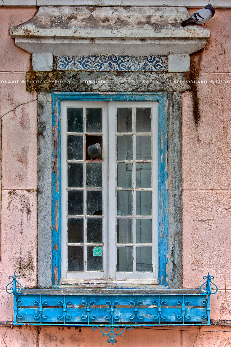 Photograph Rear Window by Pedro Duarte on 500px