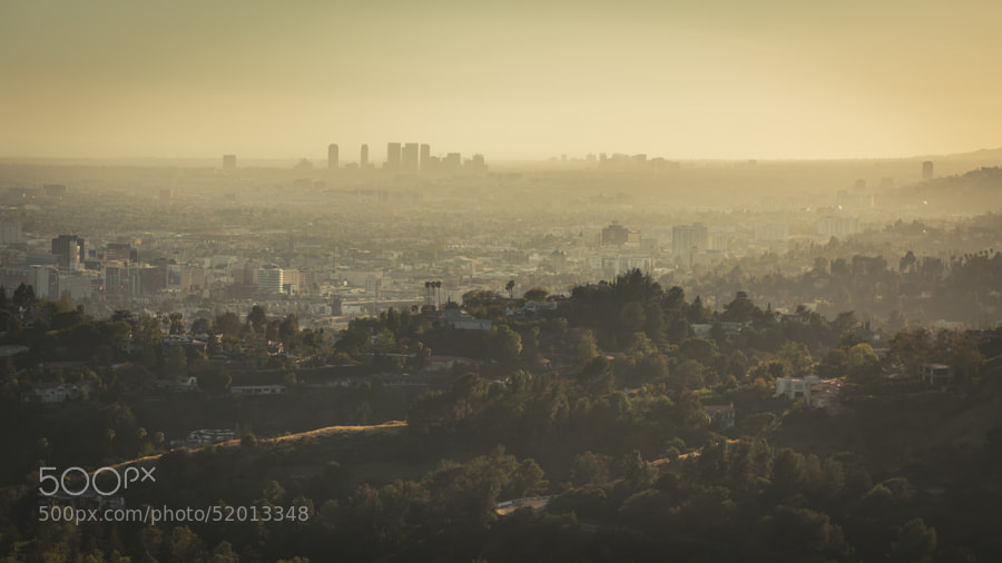 Photograph Smog Angeles by Justin R on 500px