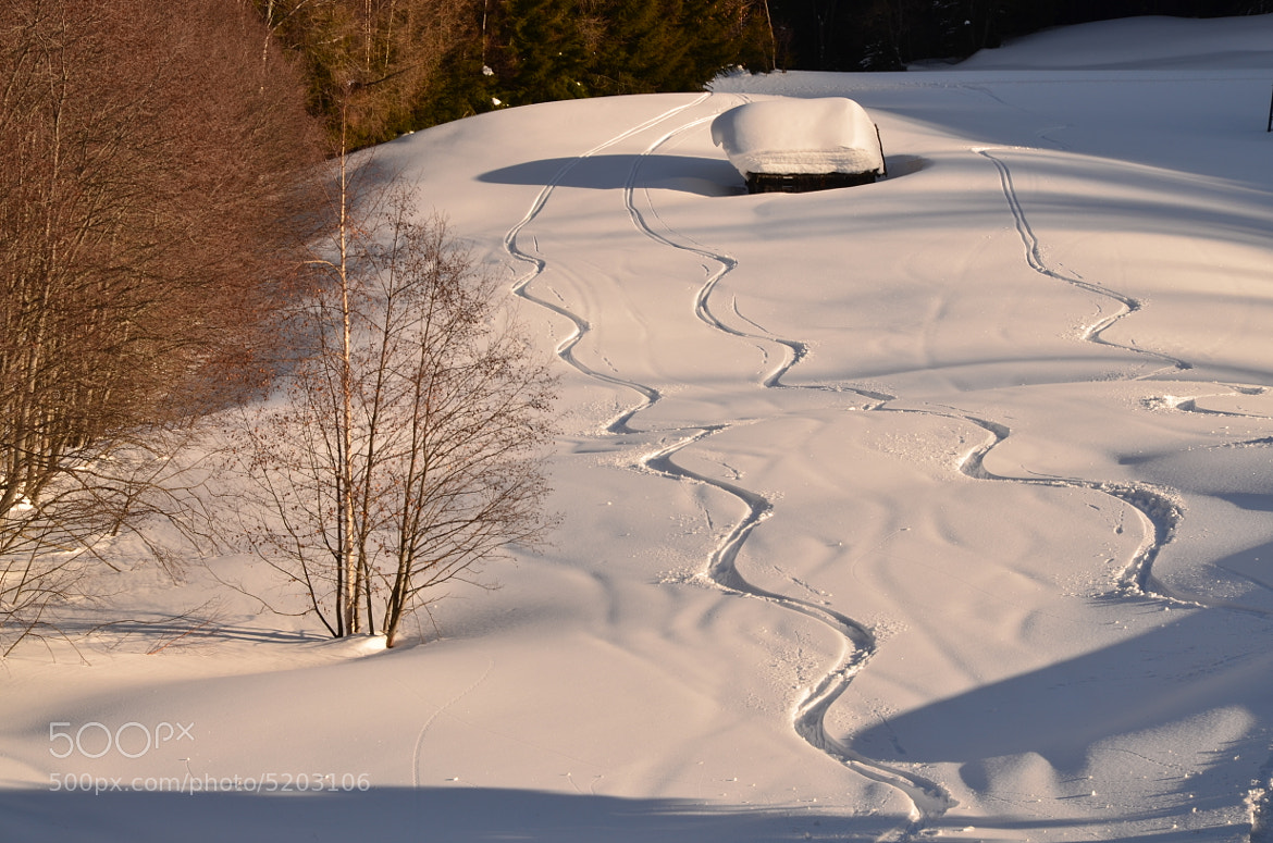 Photograph tracks in snow by helmut flatscher on 500px