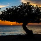 Sun setting on the Caribbean Island of Aruba. Oranjestad, Aruba