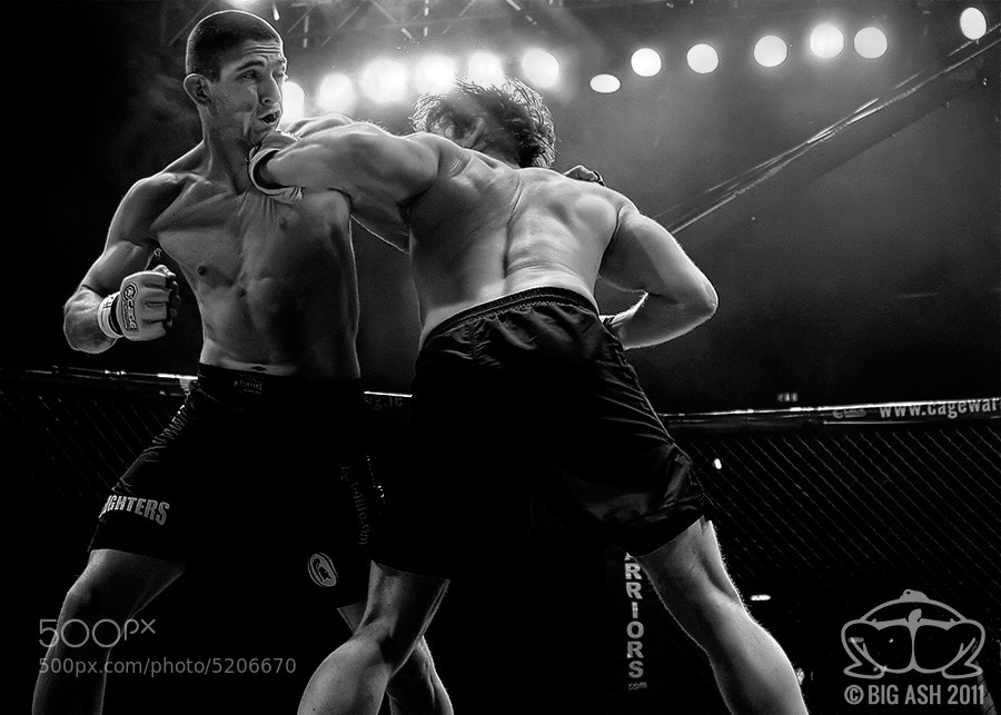Photograph MMA - Money Shot by Ashley  Wilkin on 500px