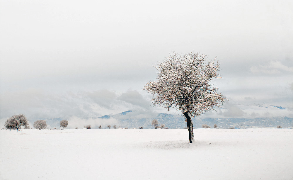 Photograph Winter Tranquillity by Christos Lamprianidis on 500px
