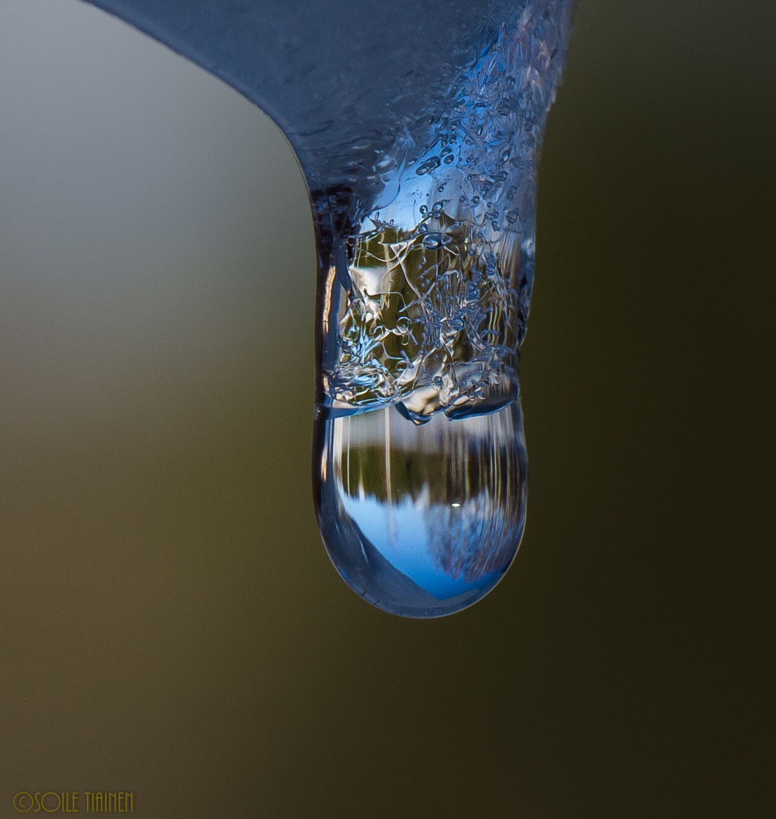 Photograph Droplet and ice=IceArt by Sole Tiainen on 500px