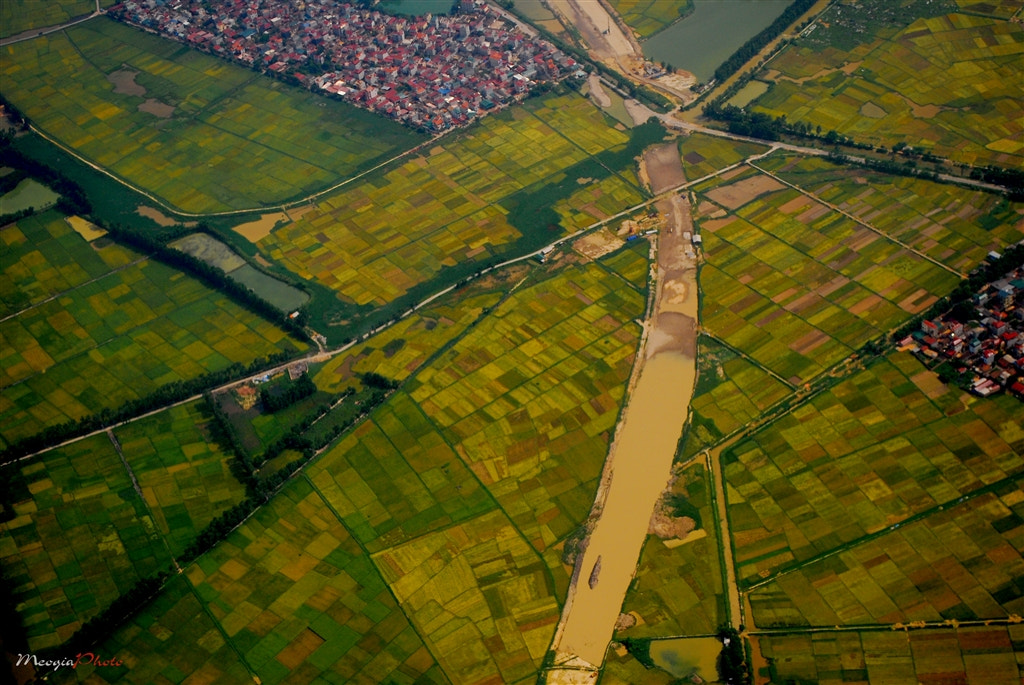 Photograph vietnamese field by Meo Gia on 500px