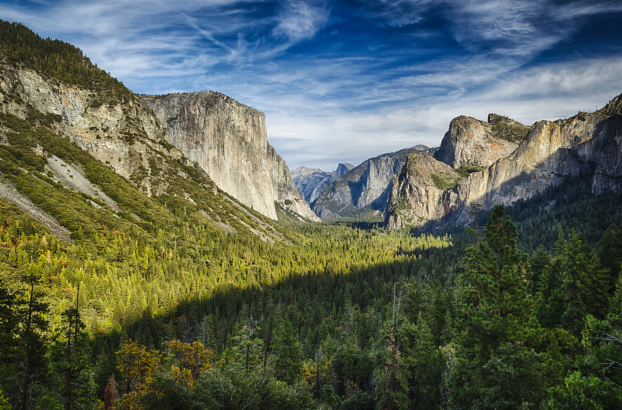 an analysis of the yosemite national parks history From its origin in 1902 in a tent in the california wilderness, best's studio, dba the ansel adams gallery, has evolved into a center that celebrates the arts and the natural grandeur of our environment.