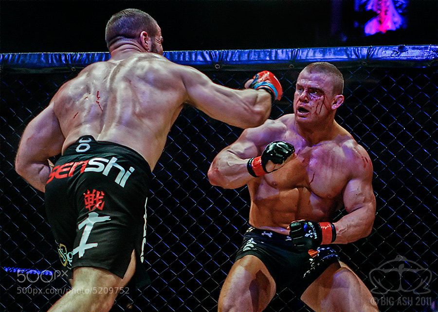Photograph MMA: Unstoppable Force - Immovable Object by Ashley  Wilkin on 500px