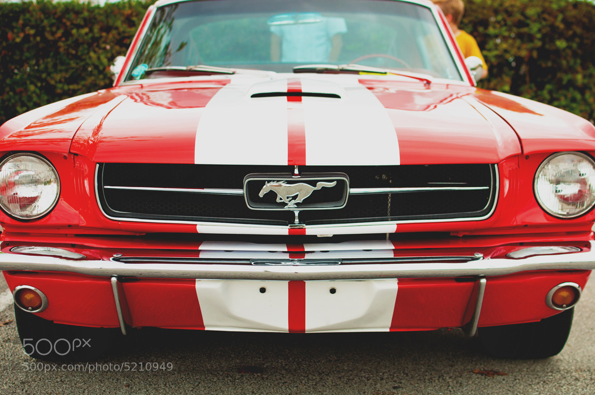 Photograph Mustang by Jonathan F Miller on 500px