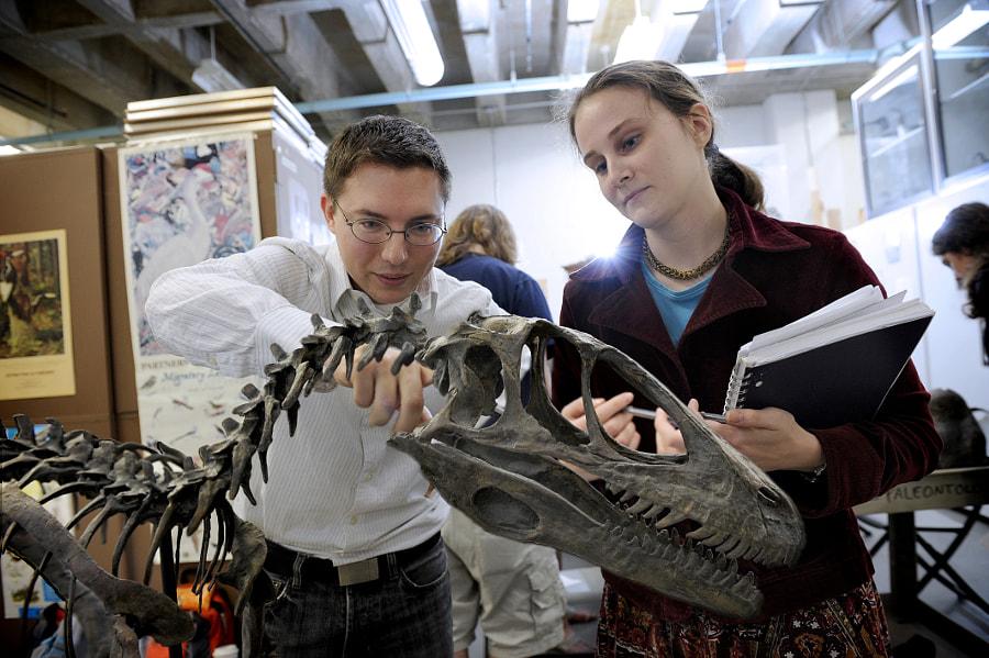 Researcher Daniel Ksepka leads an undergraduate cl