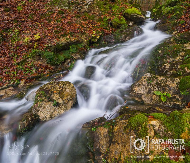 Photograph Selva de Irati waterfall by Rafa Irusta on 500px