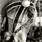 c/u carousel horse