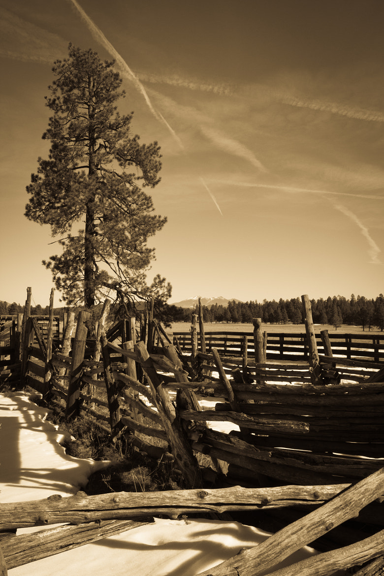 Photograph Antique Corral by Tiffany Joyce on 500px