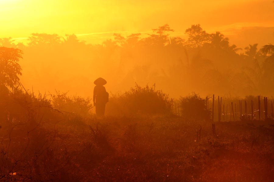 Photograph the farmer by budi 'ccline' on 500px