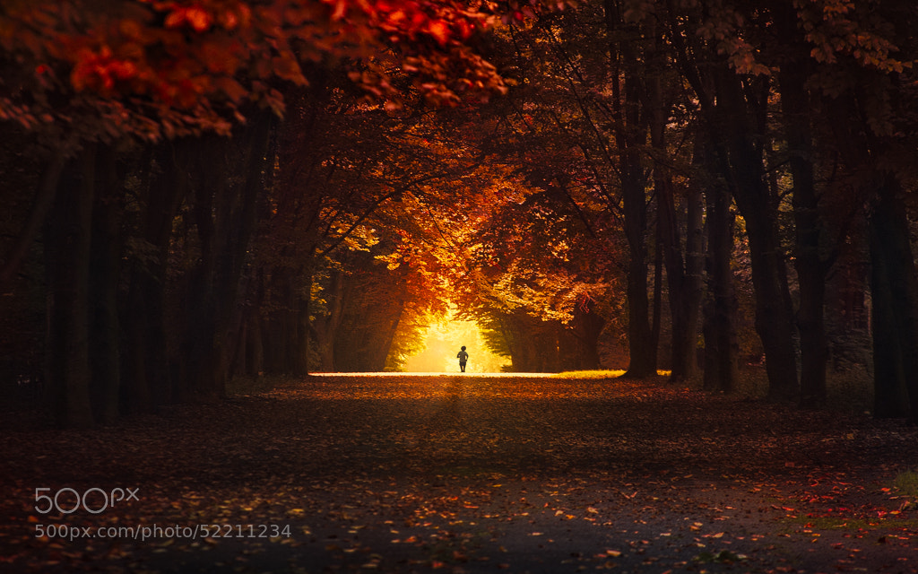 Photograph Running to Hell by Bastien HAJDUK on 500px