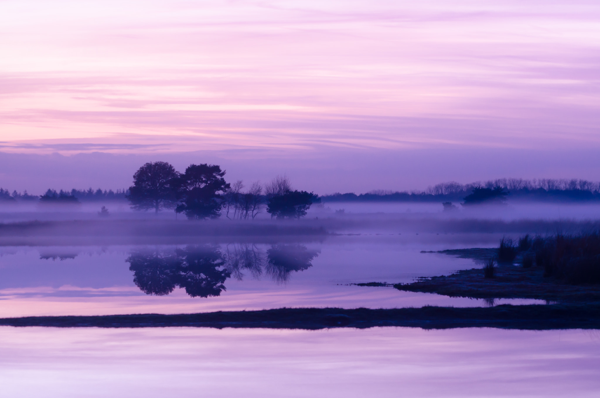 Photograph Strabrechtse Heide 158 by Mr. DESHAMER on 500px