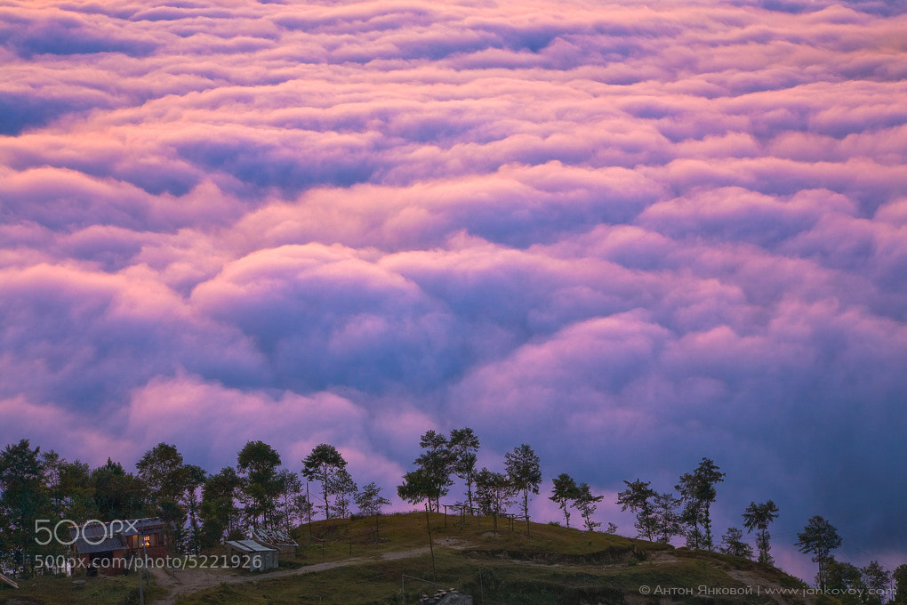 Photograph Life above the clouds by Anton Jankovoy on 500px
