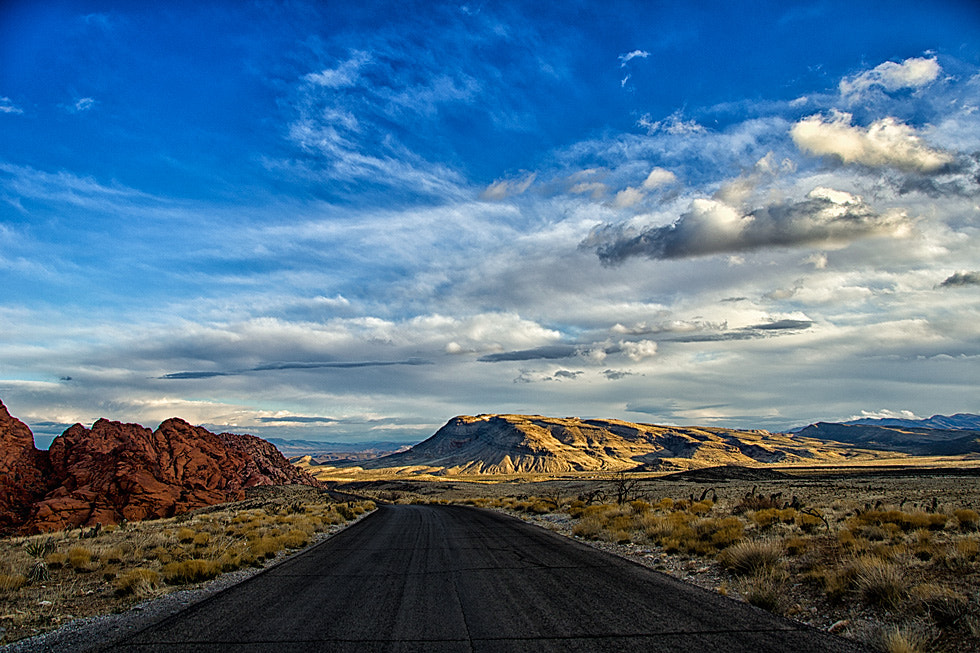 Photograph The road by Greg McLemore on 500px