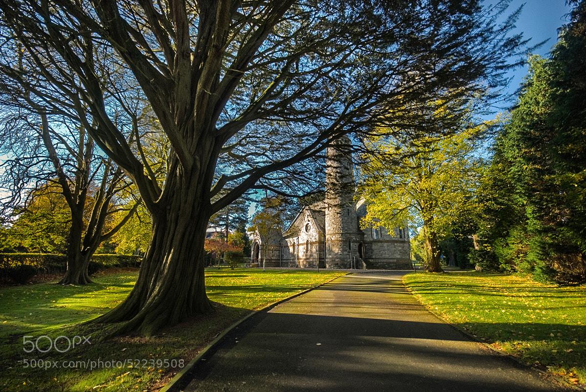 Photograph St. Patrick's Church by Lukasz Maksymiuk on 500px