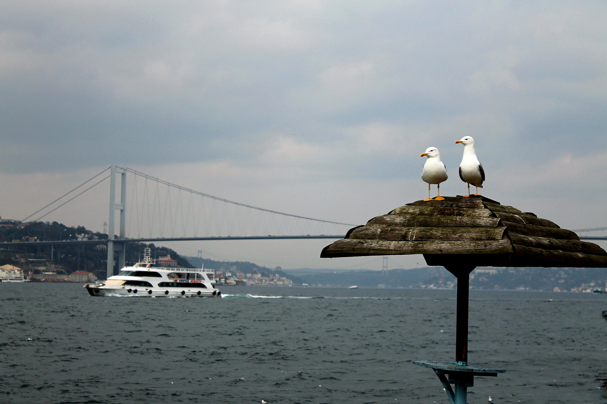 Photograph the Bosphorus... by Cem Pamir on 500px