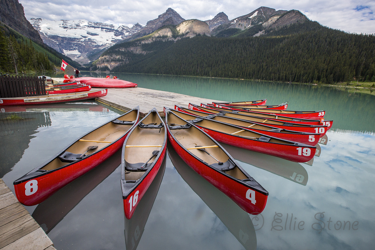 Photograph Let's Paddle by Ellie Stone on 500px
