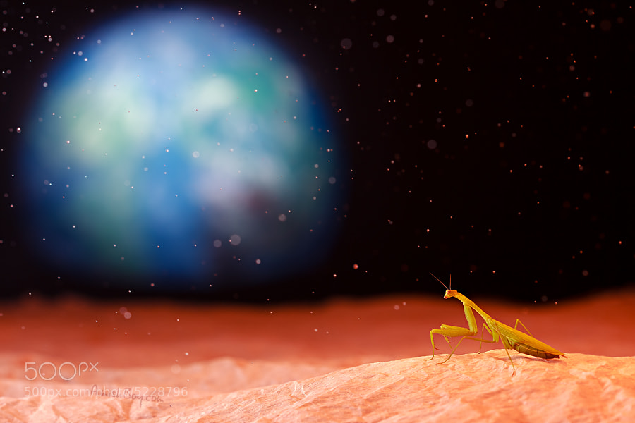 Life On Mars by AimishBoy . (AimishBoy) on 500px.com