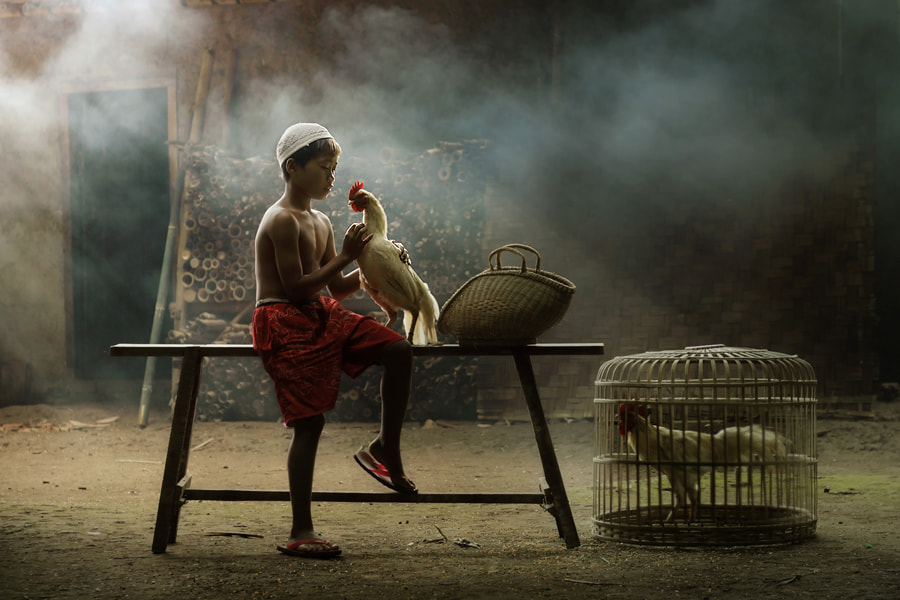 Photograph good morning my dearest friend... by asit  on 500px