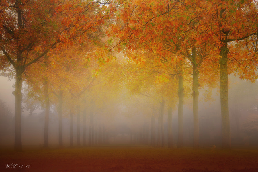 """""""Endless"""" by Wil Mijer on 500px"""