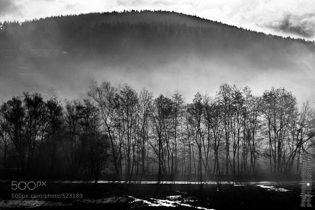 Photograph morning fog by Michael Ehrlein on 500px