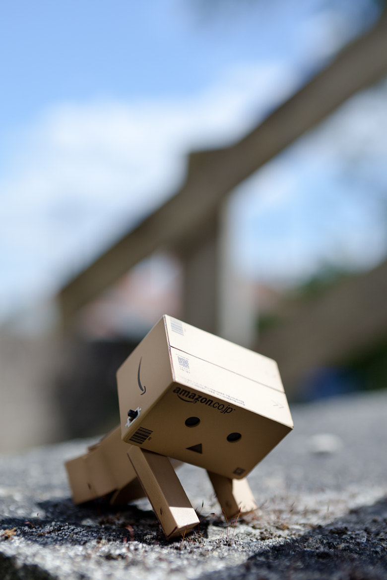 Photograph Danbo by Benjamin F. on 500px