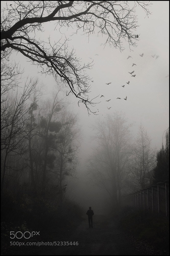 Photograph Untitled by Taras  Bychko on 500px