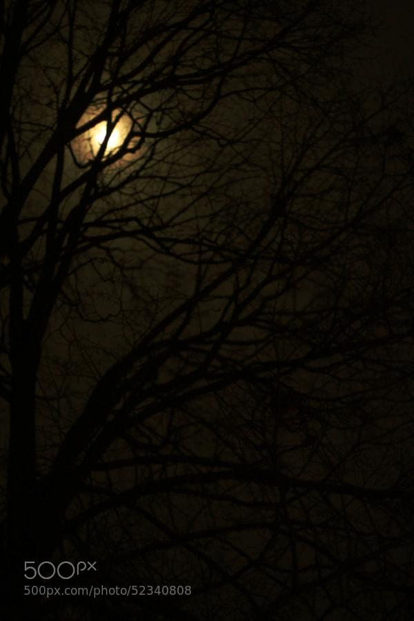 November Night by Jeff Carter on 500px.com