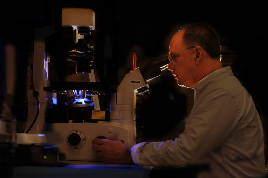 Dr. Robb Dunn works in his lab.