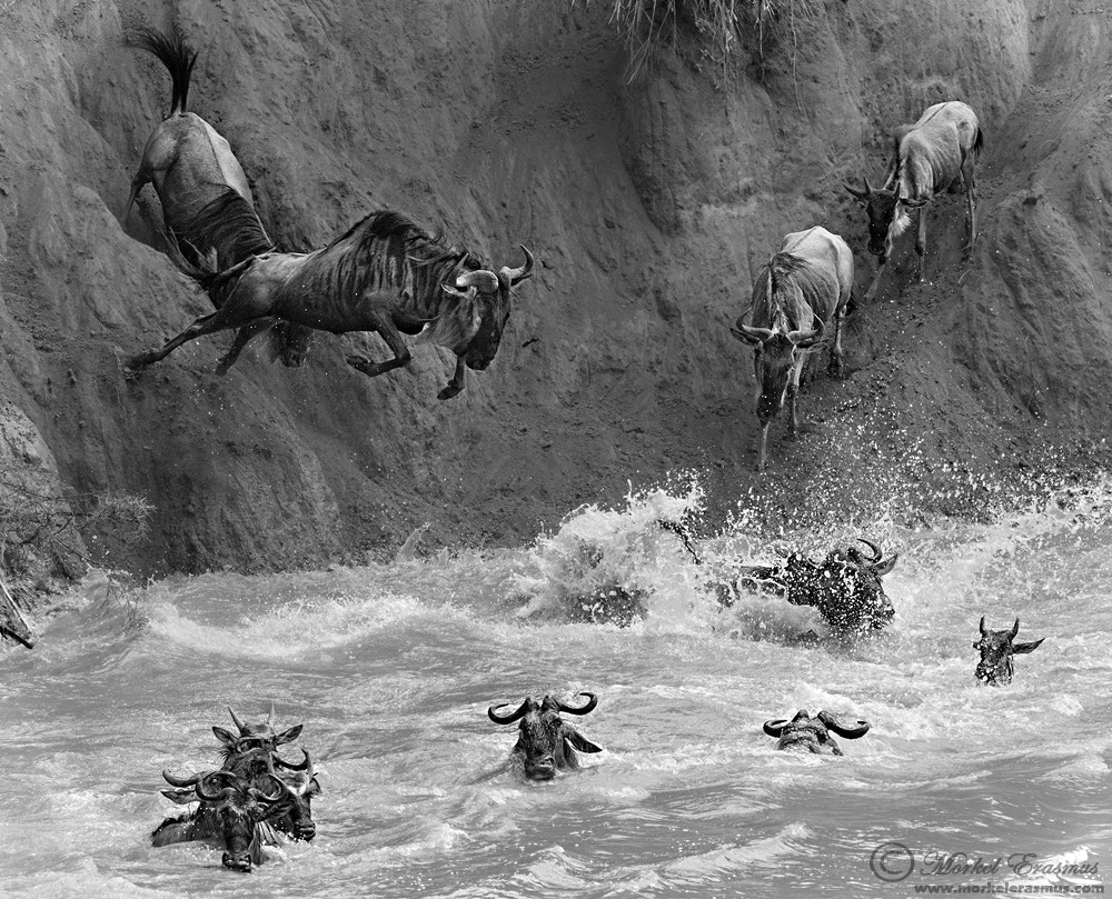 Photograph Jumpers by Morkel Erasmus on 500px